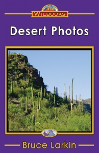 Desert Photos