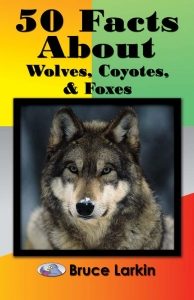 50 Facts About Wolves, Coyotes, and Foxes