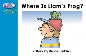 Where Is Liam's Frog?