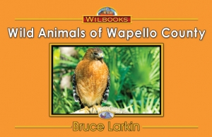 Wild Animals of Wapello County