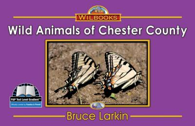 Wild Animals of Chester County