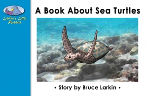 A Book About Sea Turtles