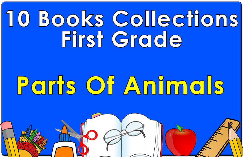 First Grade Parts of Animals Collection