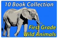 First Grade Wild Animals Collection