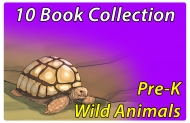 Pre-K Wild Animals Collection