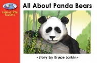 All About Panda Bears