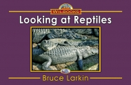 Looking at Reptiles