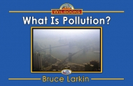 What Is Pollution? (ELS)