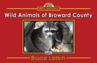 Wild Animals of Broward County