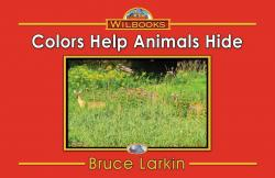 Colors Help Animals Hide
