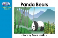 Panda Bears -(Digital Download)