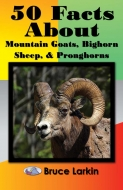 50 Facts about Mountain Goats, Bighorn Sheep, and Pronghorns