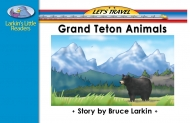 Grand Teton Animals