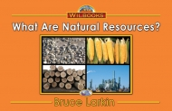 What Are Natural Resources?