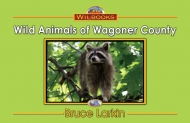 Wild Animals of Wagoner County