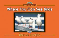 Where You Can See Birds