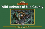 Wild Animals of Erie County