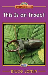 This Is an Insect