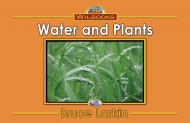Water And Plants