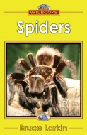 Spiders -(Digital Download)