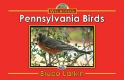 Pennsylvania Birds