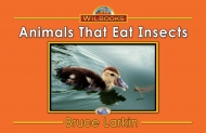 Animals That Eat Insects