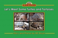 Let's Meet Some Turtles and Tortoises