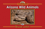 Arizona Wild Animals