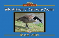 Wild Animals of Delaware County