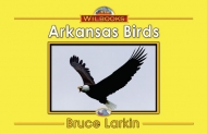 Arkansas Birds