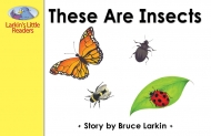 These Are Insects
