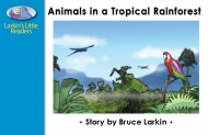 Animals in a Tropical Rainforest