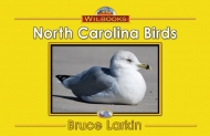 North Carolina Birds