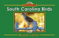South Carolina Birds