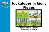 Jackalopes in Many Places