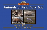 Animals at Reid Park Zoo