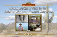 Bruce Larkin's Visit to the Arizona-Sonora Desert Museum