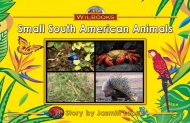 Small South America Animals
