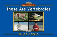 These Are Vertebrates