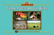 Some Facts About Birds