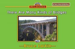 There Are Many Kinds of Bridges