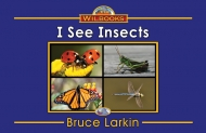 I See Insects