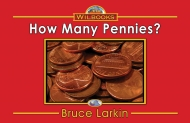 How Many Pennies?