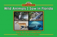 Wild Animals I Saw in Florida