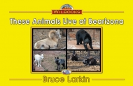 These Animals Live at Bearizona